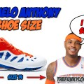 What is Carmelo Anthony Shoe Size?