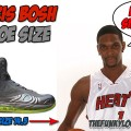 What Size Shoes Does Chris Bosh Wear?