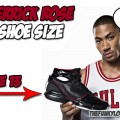 What is Derrick Rose Shoe Size?