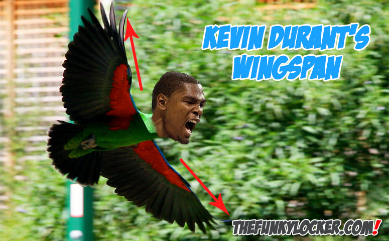 What is Kevin Durant's Wingspan?